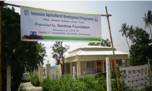 intensive agriculture area programme